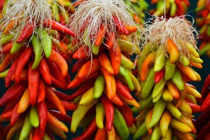 Chefs and Chile