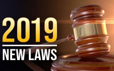 New Laws Go Into Effect this Summer